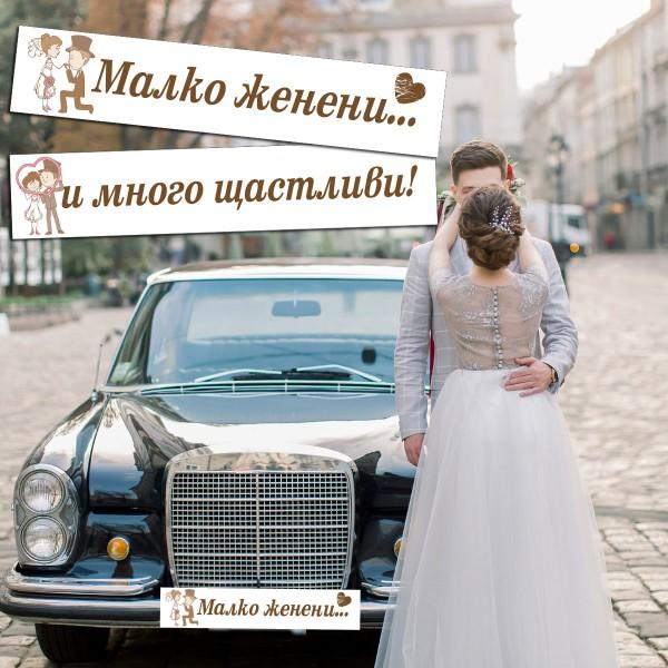 Сватбени стикери за автомобилни номера 04